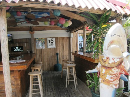 Outdoor Bar At Zogg S Picture Of Zogg S Raw Bar Grill Rehoboth