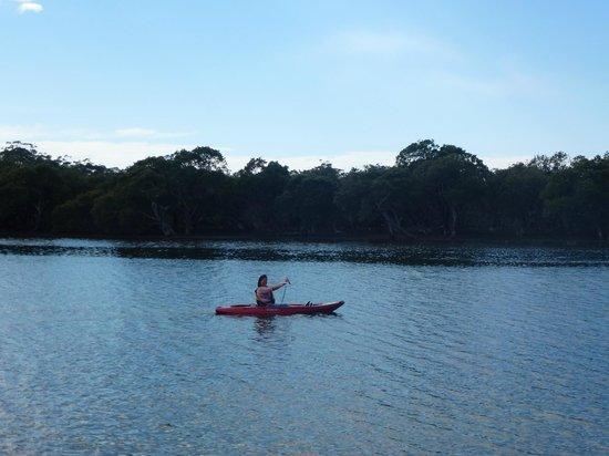 Jervis Bay Caravan Park : kayak hire