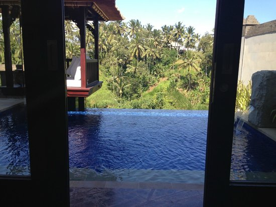 Viceroy Bali: Fantastic view from my room