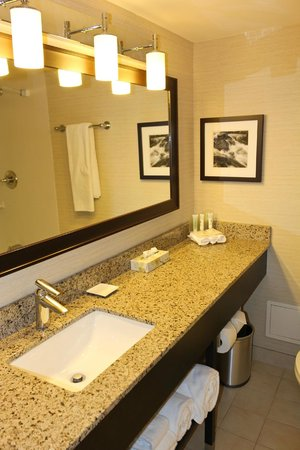 Delta Hotels by Marriott Sault Ste. Marie Waterfront: room with 2 beds