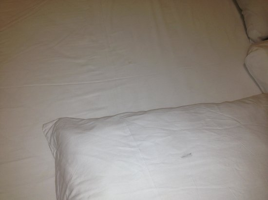 Regency Hotel: pillow case