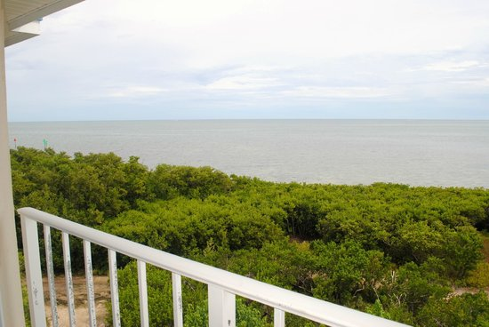 Ocean Pointe Suites at Key Largo: Our view