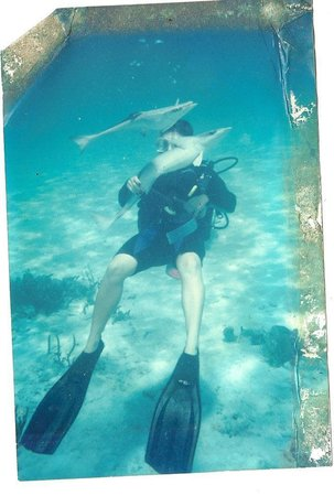 AquaAmys: All Scuba Certifications levels Avaliable & Guided Dives