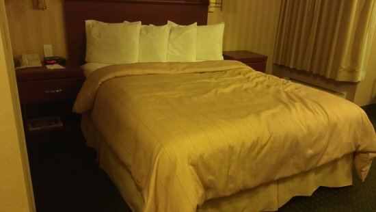 Days Inn Hamilton: Comfortable bed