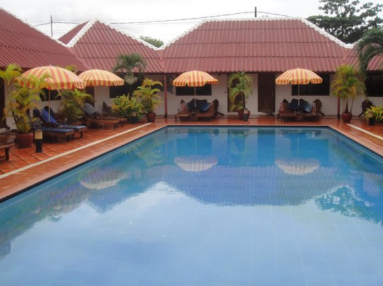 Orchidee Guest House : Pool Area