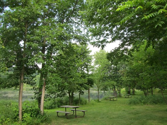 Marine on Saint Croix, MN: picnic area