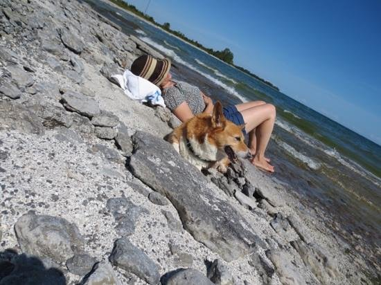 Point Petre Wildlife Conservation Area: Although the beach is rocky, Point Petre is a wonderful, tranquil place.