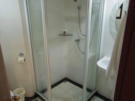 True Siam Phayathai Hotel : シャワーブースだけの部屋でしたが、清潔で快適でした。