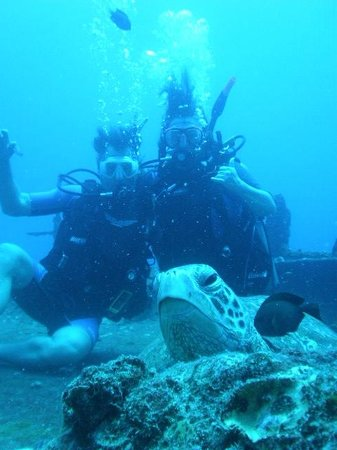 Dive Oahu: Turtle and us diving on Sea Tiger off Waikiki