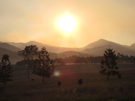 Lillydale Farmstay: Sunset at Lillydale