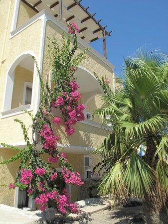 Santa Elena Hotel: back view of hotel