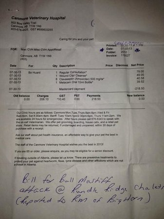 Harvie Heights, Canada: vet bill from on site dog attack from other guest's dog