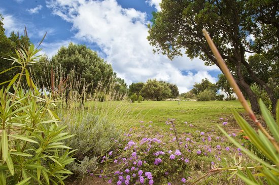 Residence Riviera : jardin