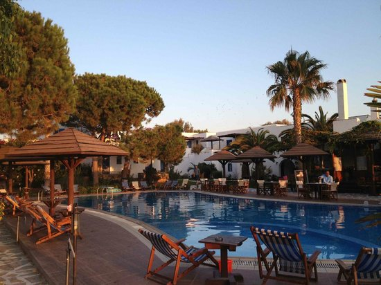 Alkyoni Beach Hotel - Pool View