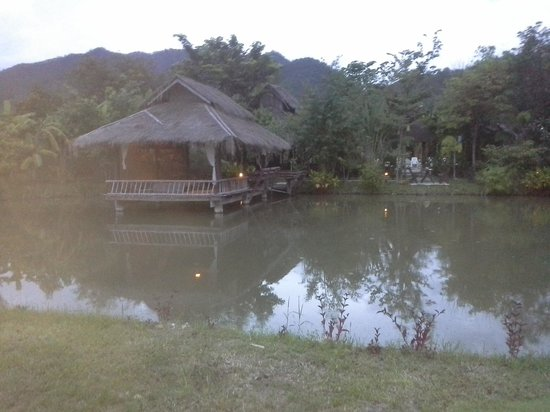 Bueng Pai Farm: bungalow en bord d'etang