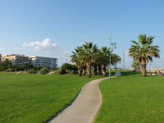 Playa de la Pineda: Surroundings