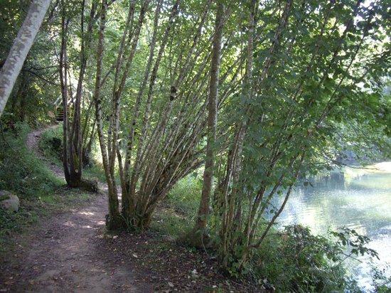 Senda Fluvial del Nansa