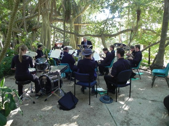 Rockhampton Botanic Gardens: Music under the Banyan trees