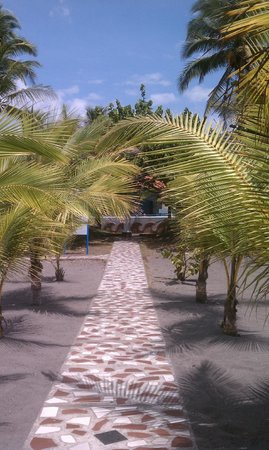 Hotel Las Olas Beach Resort: Path to the beach