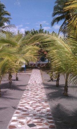 Hotel Las Olas Beach Resort : Path to the beach