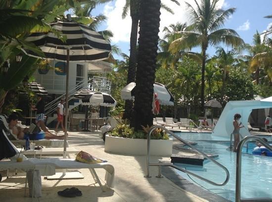 The Raleigh Miami Beach: the pool