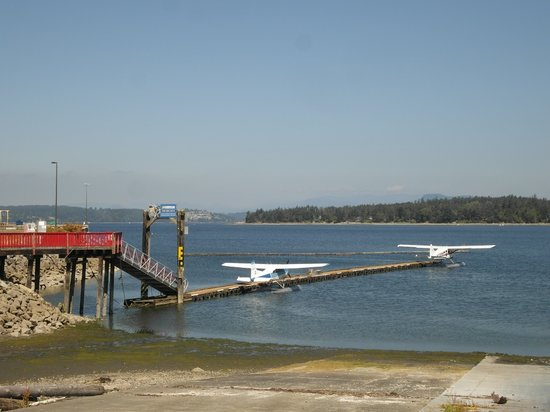Pat Bay Air Floatplane Tours: The harbour at Widgeon Drive