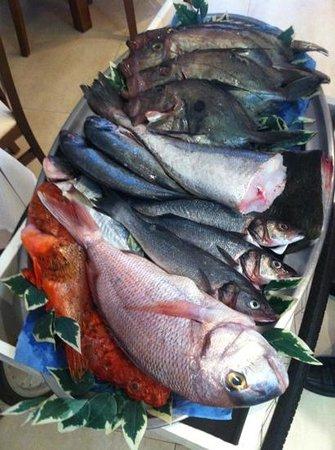 Los Faroles: pescado fresco