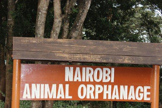 Nairobi Education Centre - Animal Orphanage: Animal Orphanage, Main Gate