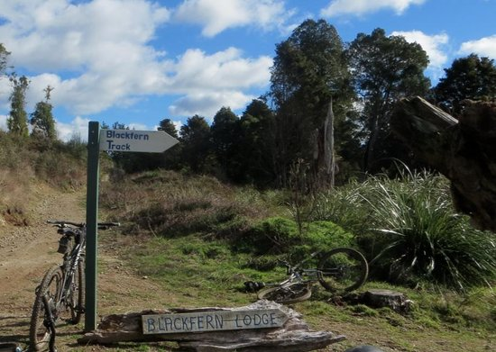 Black Fern Lodge: Well signposted from the Timber Trail.