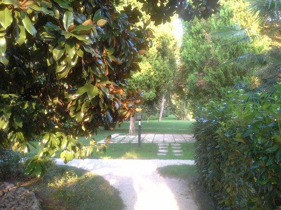 Hotel Garden Montegrotto Terme Recensioni