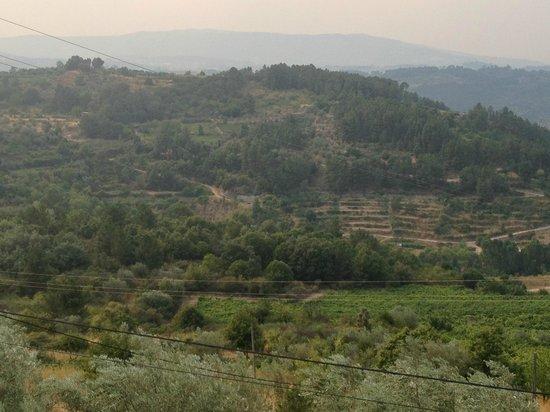 Venha Vinho: The wine estates