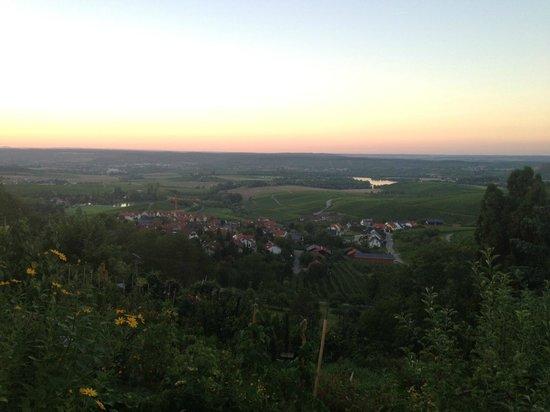 Gasthof Hohly: Die Aussicht von der Terrasse