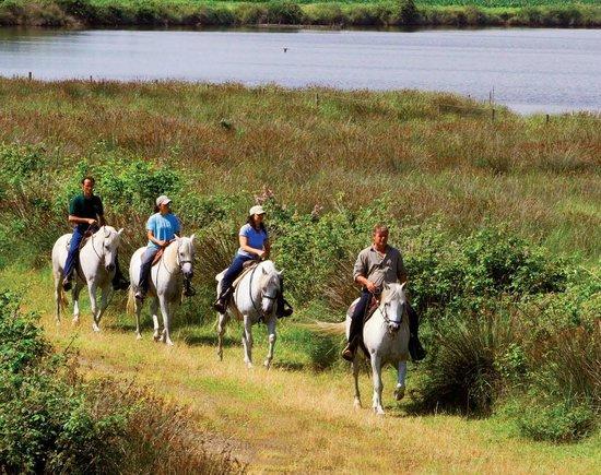 Michelangelo Resort: Escursione a cavallo
