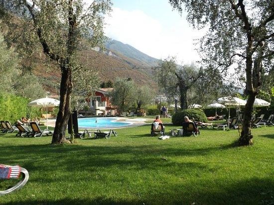 Hotel Benacus Malcesine: Pool Garden