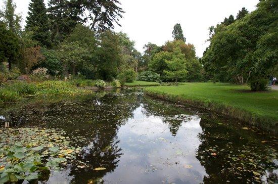 National Botanic Gardens: National Botanic Garden Dublin