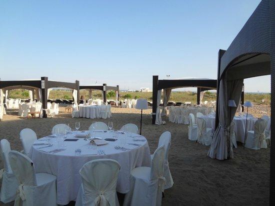 hotel terrazze villorba - 28 images - le terrazze villorba ...
