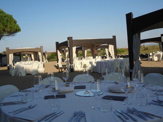 per una cena da sogno - Foto di Terrazze, Villorba - TripAdvisor