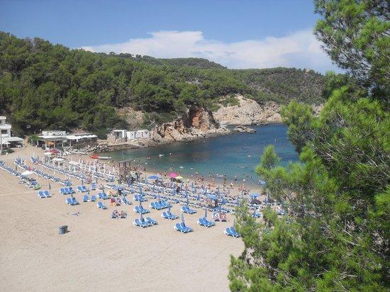 San Miguel Beach Club: Fab beach