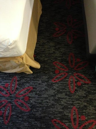 Comfort Inn & Suites University: floor