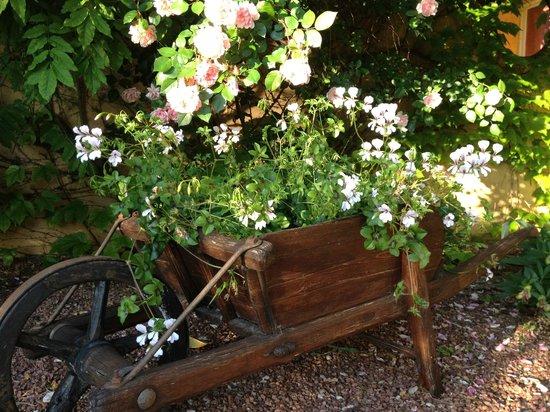 B&B Le Mas Jorel: gardens
