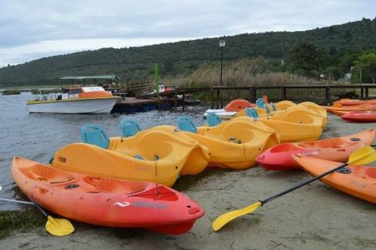 Pine Lake Marina: Canoes