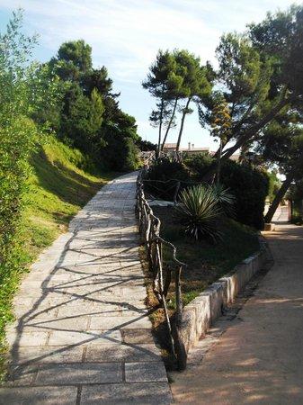 Exagon Park : Petit sentier qui vous emmène à la plage