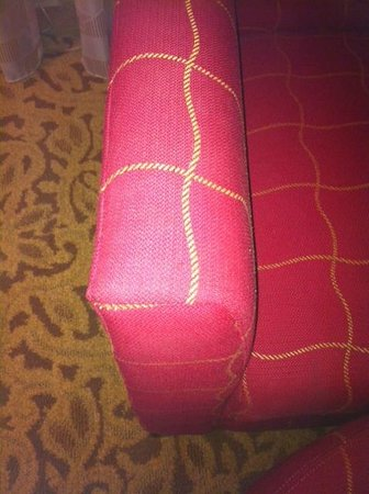 Rochester Marriott Mayo Clinic Area: worn arm chair