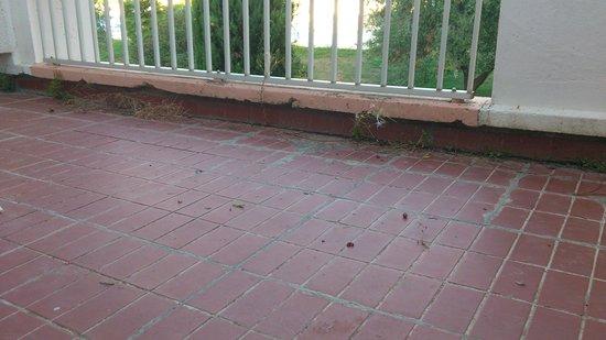 Lagrange Confort+ Residence Village Club de Camargue : terrasse et son herbe!!!