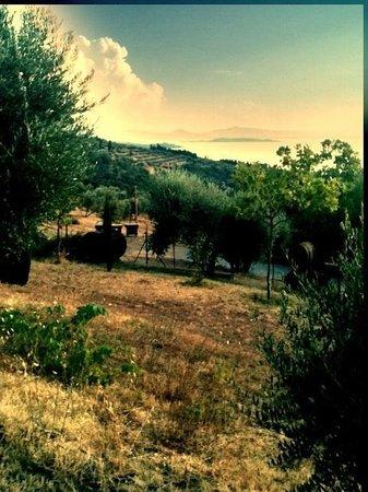 La Volpaia : Vista dalla casa