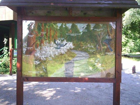 Portumna Forest Park : Wildlife sign