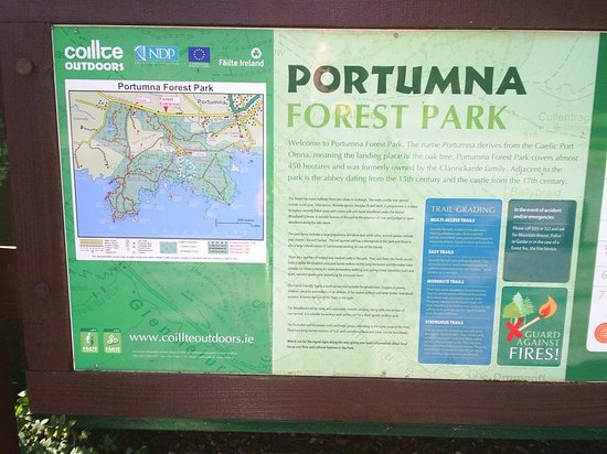 Portumna Forest Park: Information board