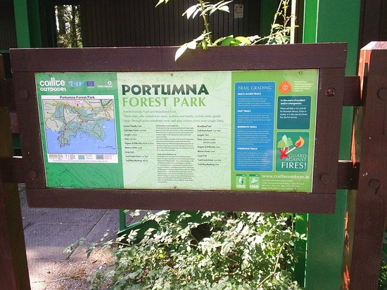 Portumna Forest Park: Trail guide