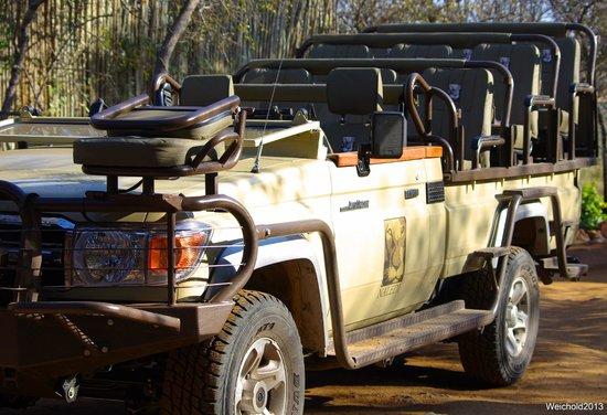 Naledi Bushcamp and Enkoveni Camp: Our transportation