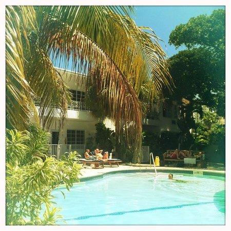 Tradewinds Apartment Hotel: Pool